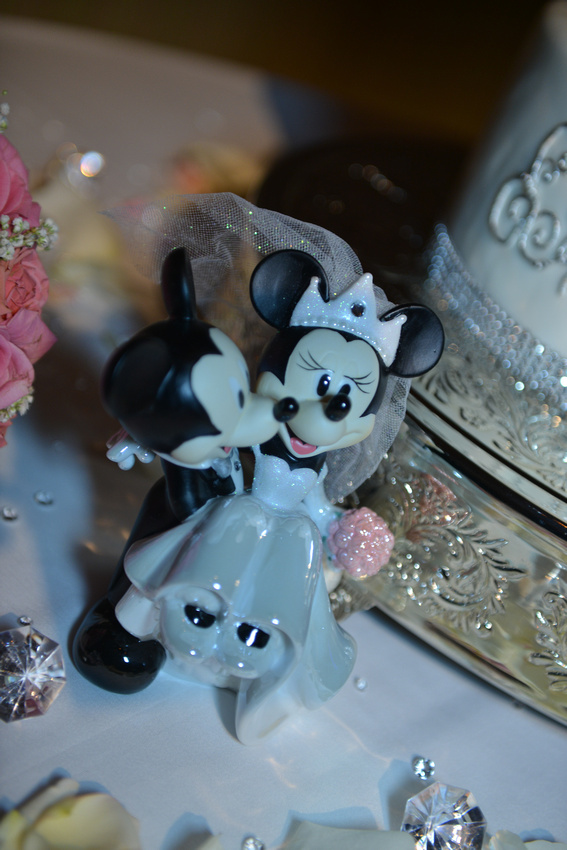 Alyssa & Stephen , best wedding photographer, Disney wedding photography , A Magic Moment